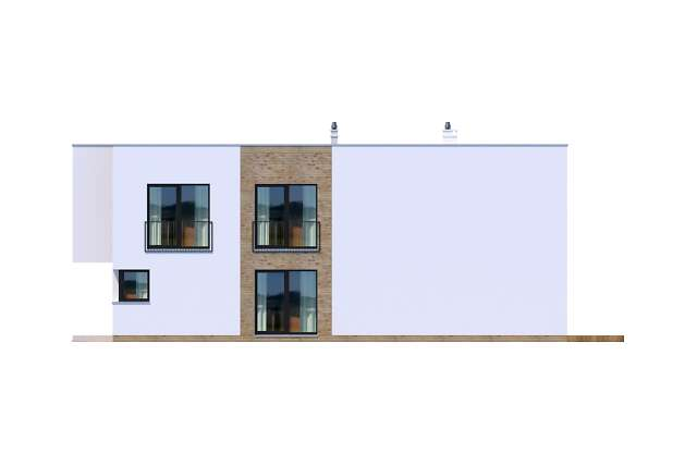 Zobacz powiększenie elewacji bocznej prawej - projekt Delft III